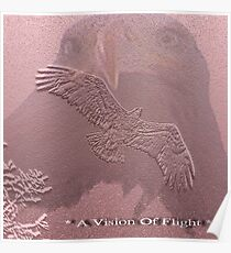 A Vision Of Flight Poster