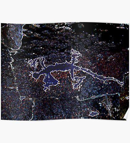 Rock Art Gecko Poster