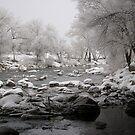 Pogo River by Jon  Johnson