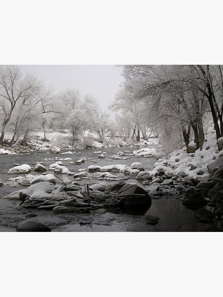 Pogo River by JandMPhoto
