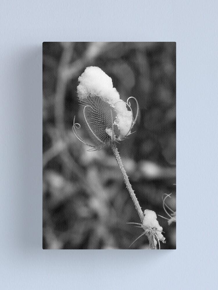 Alternate view of Snowflower Canvas Print