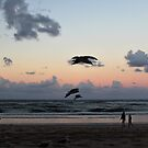 Seagulls at sunset by Annie Smit