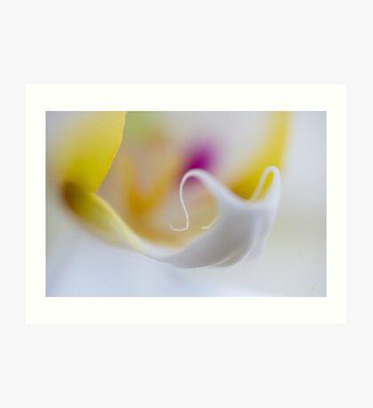 Orchid's Tongue Art Print