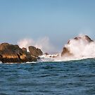 Spectacular Waves smashing on the rocks at Milford Sound fjord opening into Tasman Sea by Danielasphotos