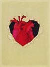 The hidden heart by Sybille Sterk
