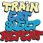 Train Eat Sleep Repeat - color by paintcave
