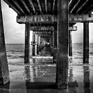 Under the Steeplechase Pier, Coney Island NY 2009 by Carlos Restrepo