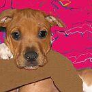 So Sad  Puppy by Linda Miller Gesualdo