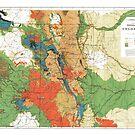 Vintage Colorado map by parmarmedia