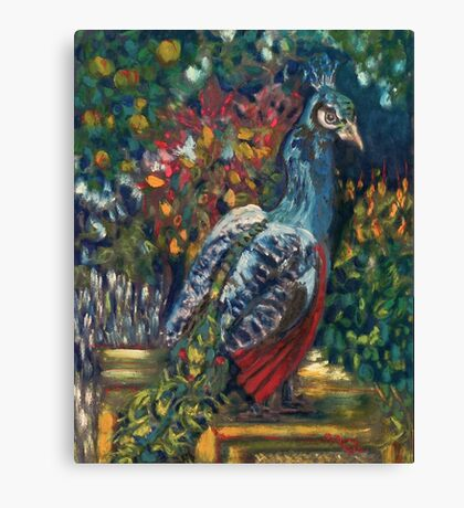 The Peacock Garden Canvas Print