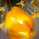 Yellow Pepper by Ann Persse
