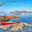 Arona: red boat on the shoreline by Giuseppe Cocco