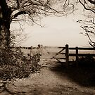 The Gate to shropshire by Matt Sillence