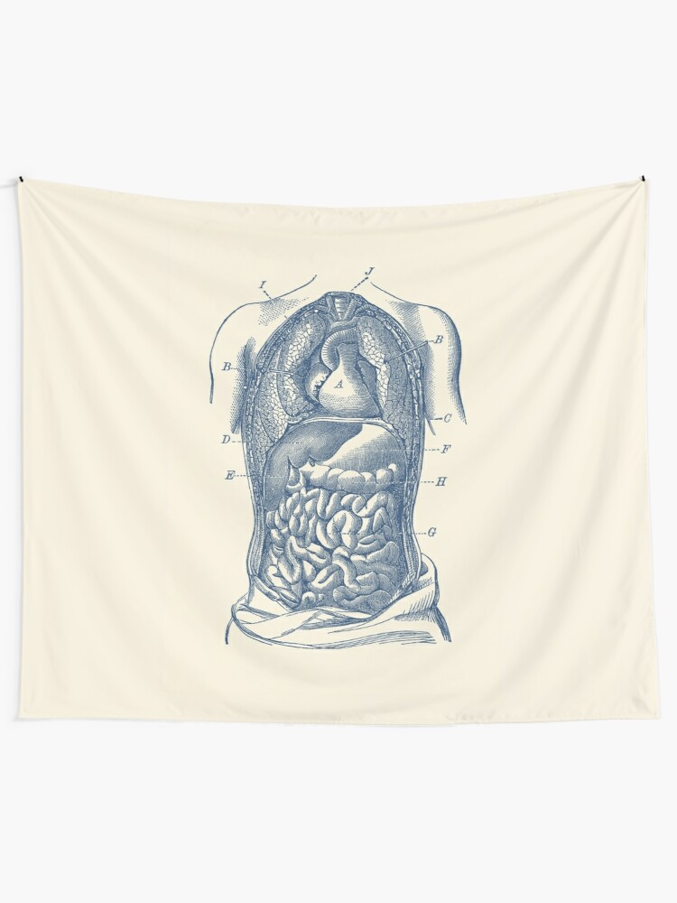 human digestive system diagram wall tapestry