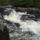 River Symphony by Michael T