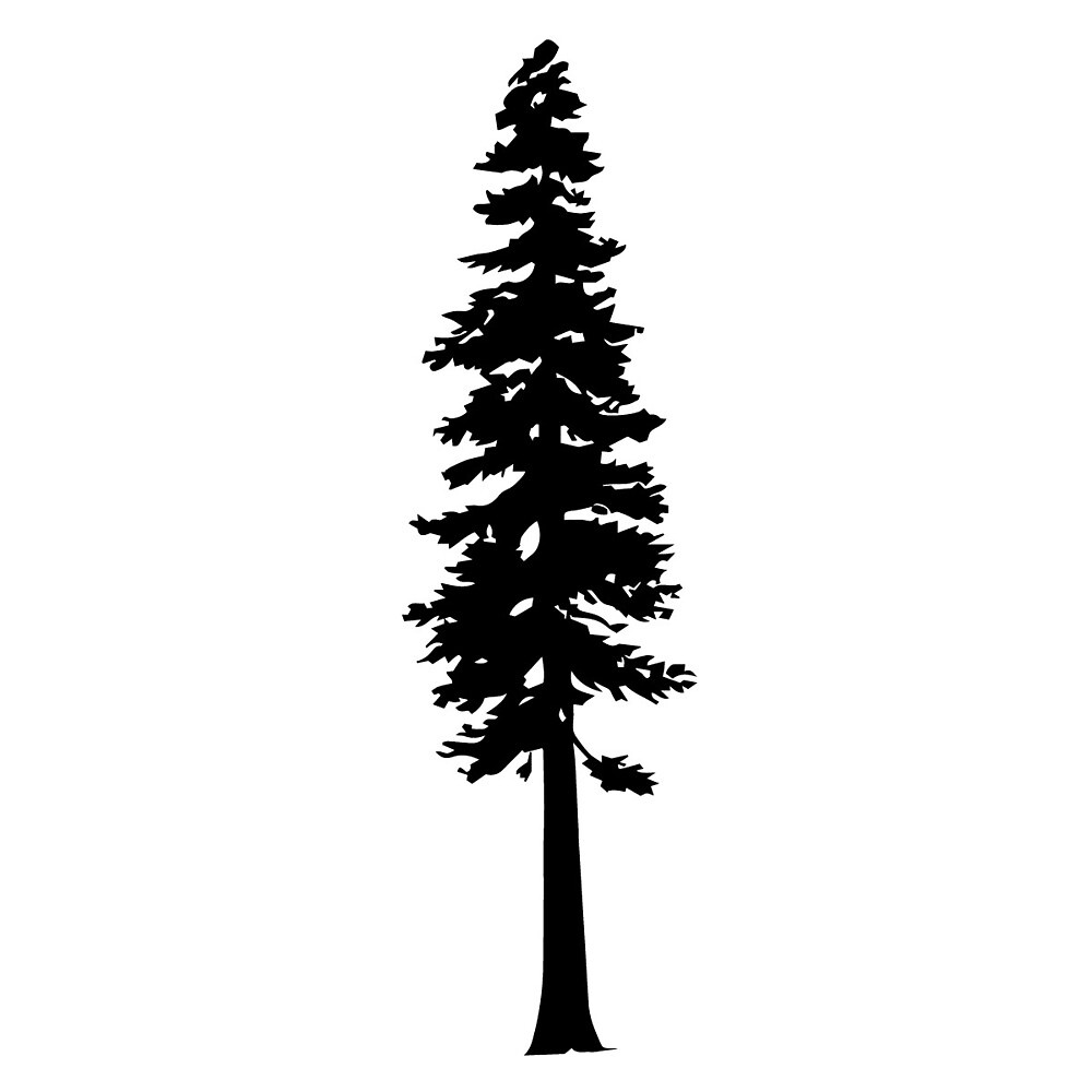 Quot Redwood Tree Silhouette Quot By Katedill0n Redbubble
