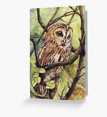 Owl from Butterfingers and Secrets Greeting Card