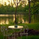 Backyard Habitat by DottieDees