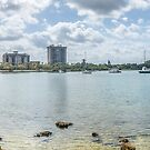 Sarasota Bay  by John  Kapusta