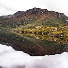 Lake Reflections by Stephen  Nicholson