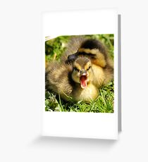 Do You Mind, I'm Trying to Take a Nap! Greeting Card