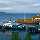 Tiny Ferry by Shannon Beauford