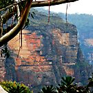 Blue Mountains NSW Australia by Bev Woodman