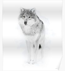 Lone Wolf  Poster
