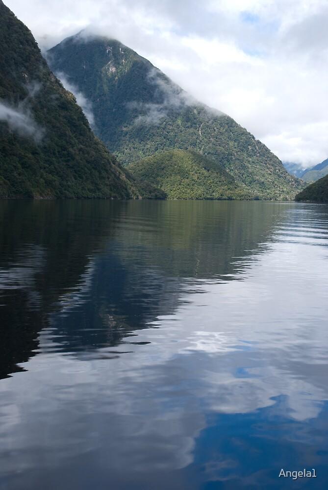 Milford Sound, New Zealand by Angela1