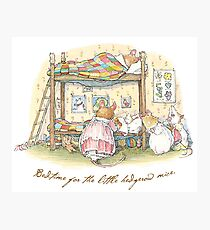 Lady Woodmouse gets the little mice into bed Photographic Print
