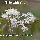 Apple-Blossom Time by richeb