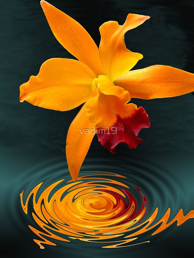 Yellow Orchid by vadim19