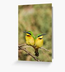 Unity (Little Bee Eaters) Greeting Card