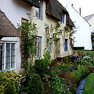 Dunster Cottages by Dave Law