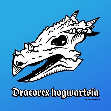 Dracorex hogwartsia skull! by anatotitan