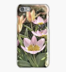 Lily Flowering Tulips iPhone Case/Skin