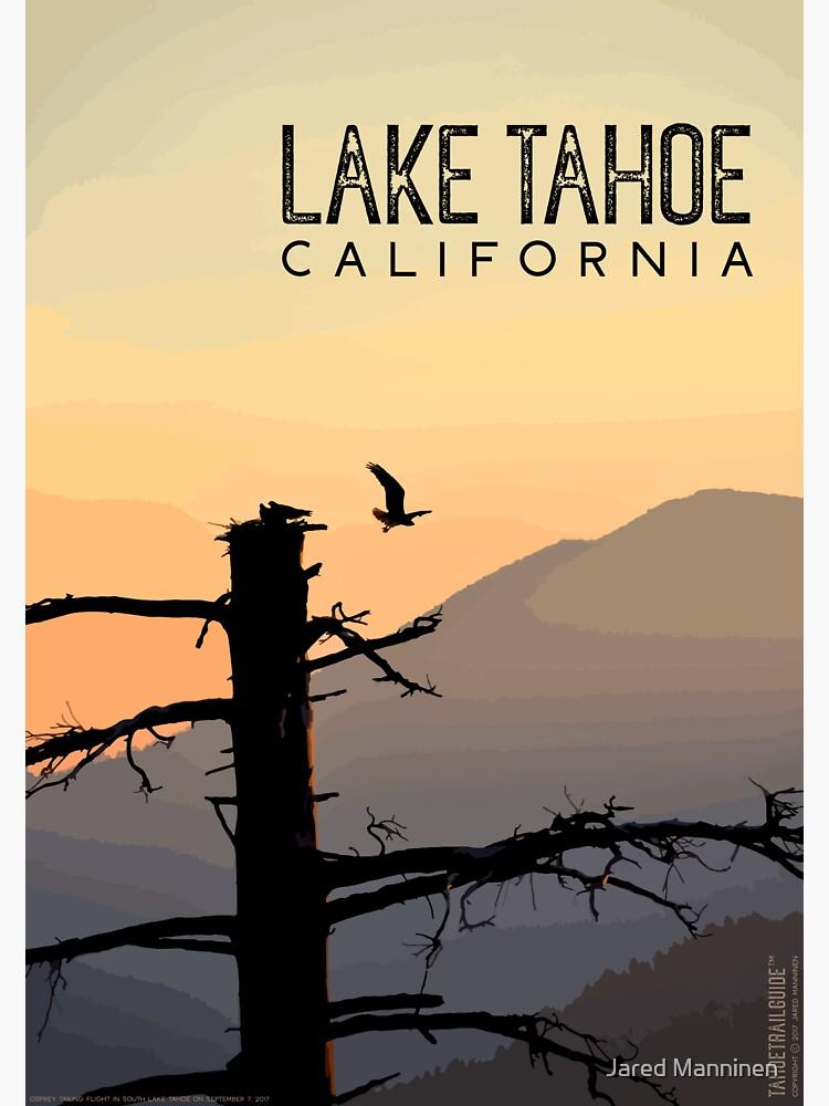 Osprey Takes Flight at Sunrise (Lake Tahoe, CA) by JaredManninen