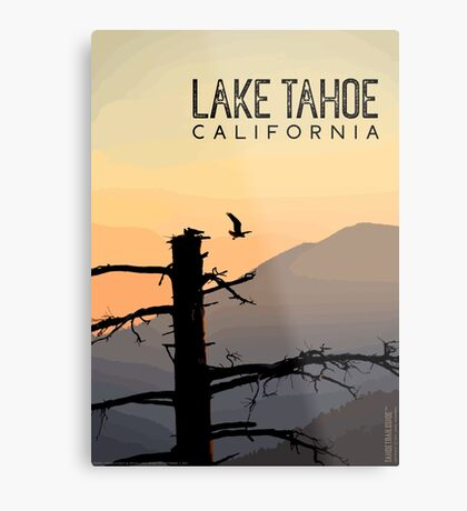 Osprey Takes Flight at Sunrise (Lake Tahoe, CA) Metal Print