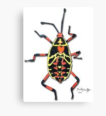 Colorful Insect Canvas Print