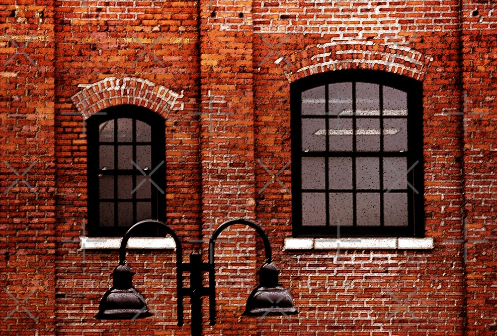 Two Windows In A Brick Building. by CarolM