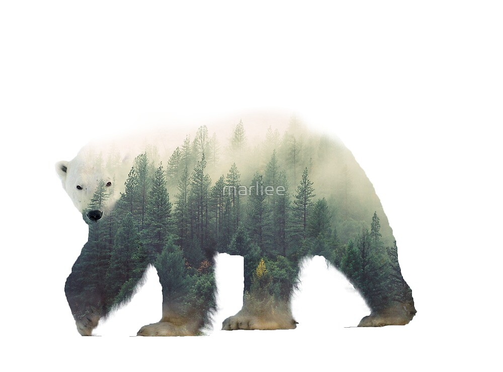 polarbear in forest by marliee