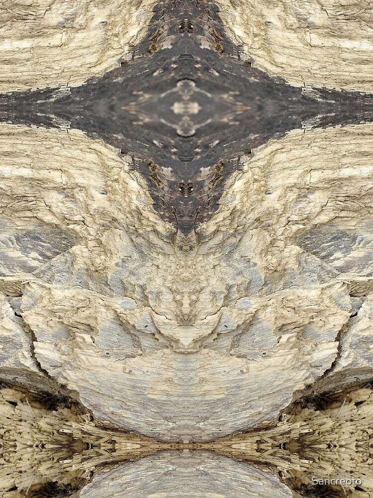 Stone by Sancreoto