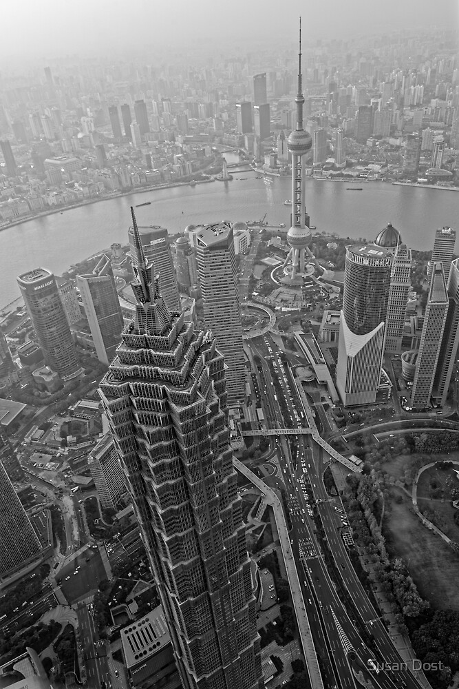 Birds Eye View From Shanghai Jin Mao Tower by Susan Dost