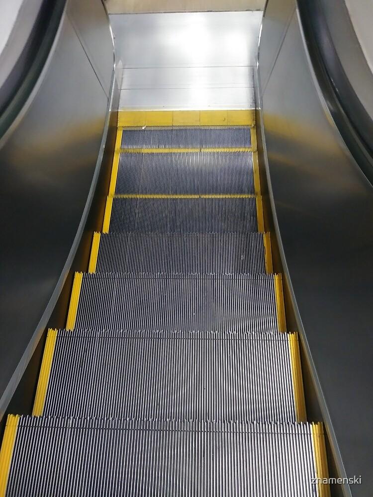Escalator, Dark flower, #Escalator, #Dark, #Flower, #DarkFlower by znamenski
