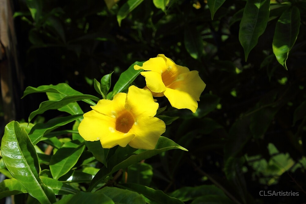 Yellow Flower Pair by CLSArtistries