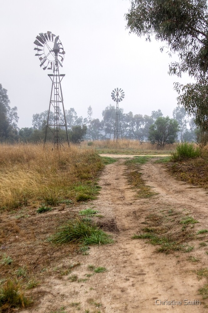 Foggy Morning at Inverleigh, Victoria by Christine Smith
