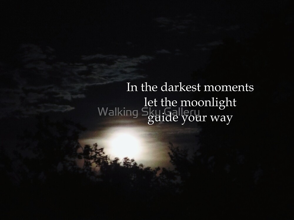 In The Darkest Moments Let The Moonlight Guide Your Way by Walking Sky Gallery