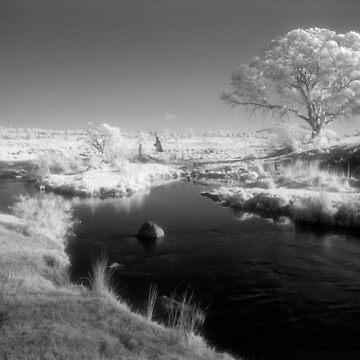 Inky black Mowamba River by onmybike