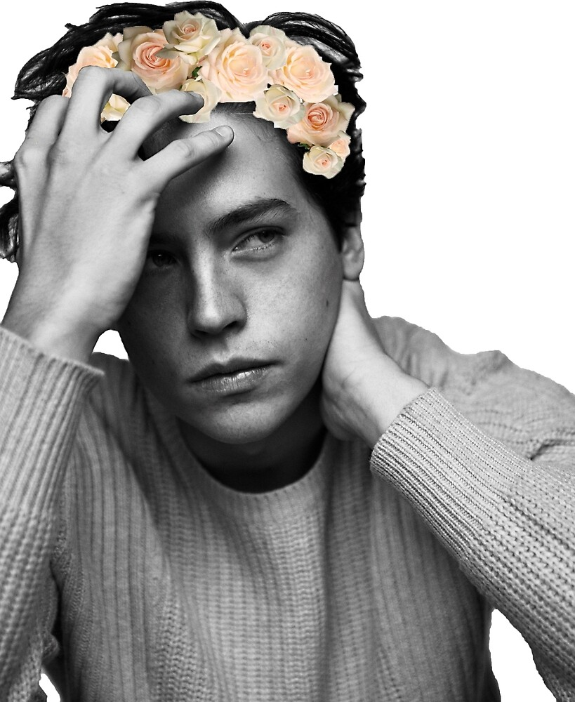 Cole Sprouse- flower crown by Isabella Rachel