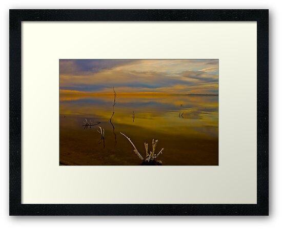 Salton Sea Dawn by photosbyflood